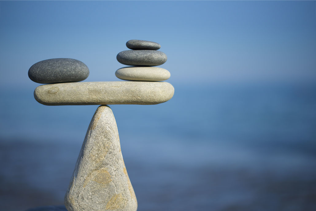 CONFUSED BETWEEN GROWTH FUND AND BALANCED FUND. GET YOUR ANSWER HERE……