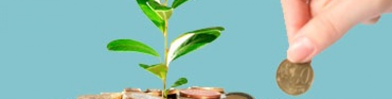 Let your funds nurture for a more bright future with Axis Long Term Equity Fund