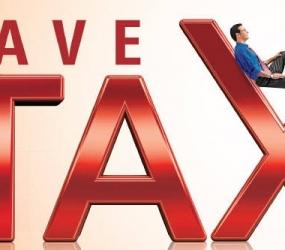 Birla Sun Life Tax Relief 96 Fund –  If Tax Saving is a priority..